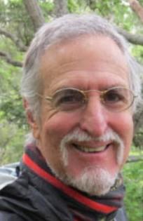 dr wollman